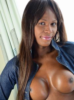 The best Black transsexual models in only hardcore action!